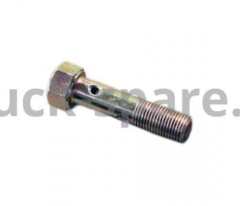 310239-П29 Болт топливный двойной (М10*1*40) (ОАО ТМЗ)